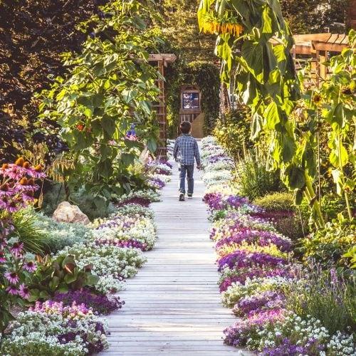 08.-Community-Garden-by-Kristin-McCauley