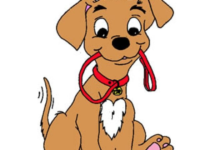 Dog license renewals are due for 2020!