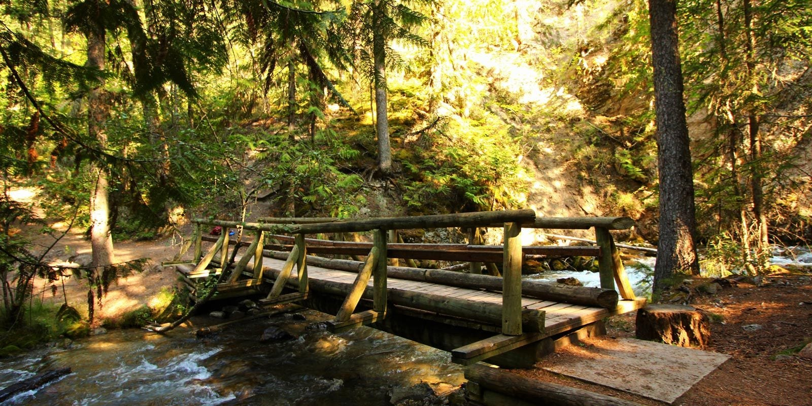 09-Sept.-Juniper-Trail-Bridge-by-Lauren-Logan